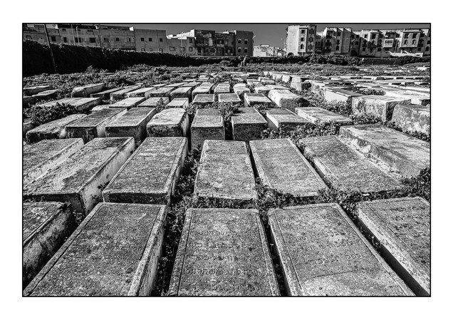 New Jewish Cemetery.   Essaouira, Morocco.