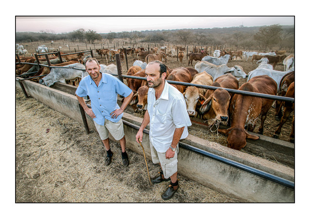 Paul (R) and Grant Pilossof, two of the few remaining Jewish farmers in the country.  Ruvale Farm, Bulawayo, Zimbabwe.