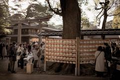 Ema prayer plaques. Meiji Jingu Shrine. Shibuya, Tokyo.