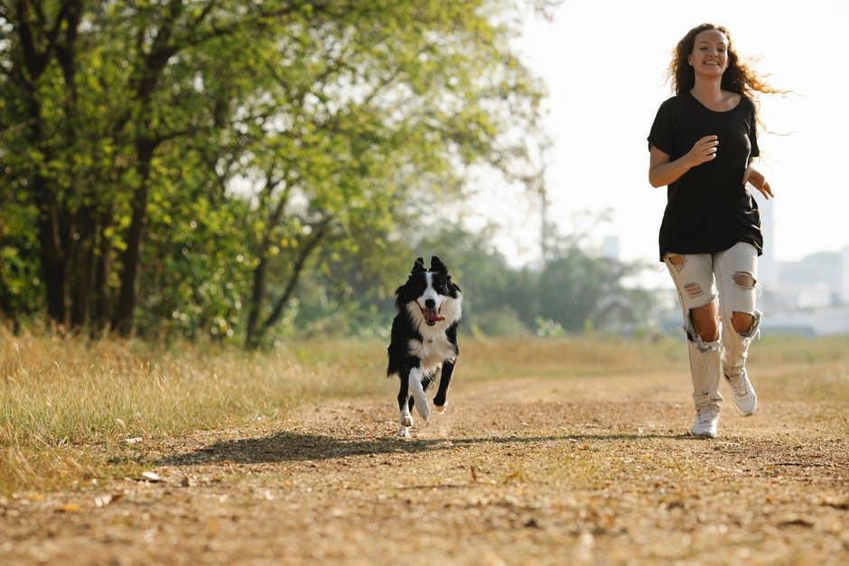 Dogs Help Keep Us Healthy