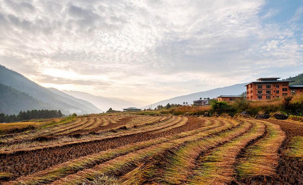 Landscape, Paro, Bhutan