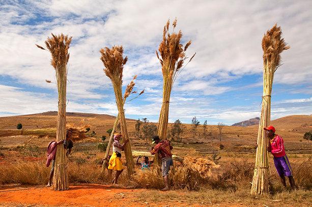 Isalo, Madagascar