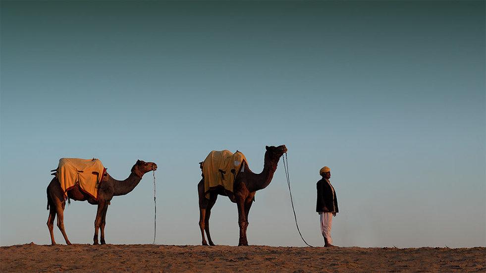 Camel herder, Thar Desert, India