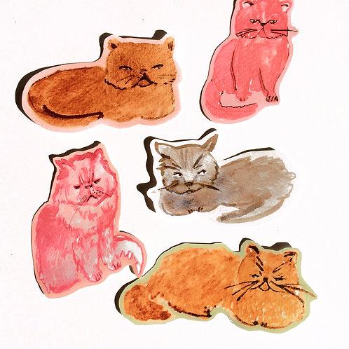 Geïrriteerde katten stickers