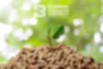 Biomasa.png