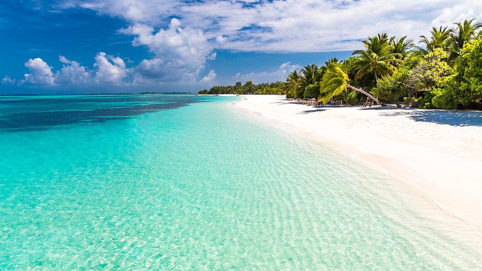 Paradise Beachfront Living