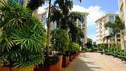 City Garden Pattaya, Global Top Group, Pattaya, Condo, Sale, Rent, Pattaya properties, Pattaya Real Estate, Thailand Property, Real Estate in Thailand, Thailand Investment Property, พัทยา, คอนโด, ขาย, เช่า, คอนโดมิเนียม,คอนโดพัทยา, เมืองพัทยา, ซื้อคอนโด, เช่าคอนโด, คอนโดสำหรับขาย, อสังหาริมทรัพย์, ผู้สร้างผู้พัตนาอสังหาริมทรัพย์, 公寓, 出售, 购买, 出租, 芭提雅, 泰国房产, 曼谷房价, 泰国买房子, 泰国买房
