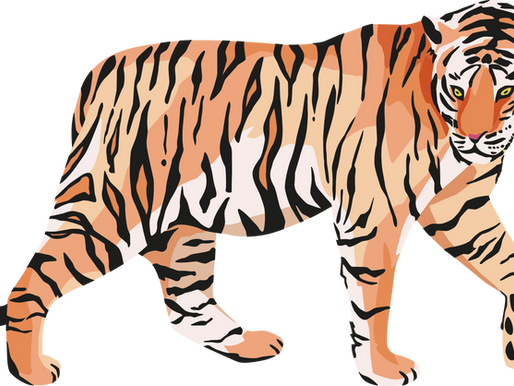 Anxiety: There is a tiger trying to eat you!