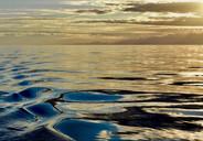 Golden sea...
