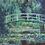 Thumbnail: 白い睡蓮