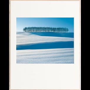 光る落葉松の丘(1月-2月)
