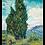 Thumbnail: 糸杉