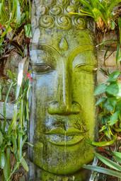 The Retreat - Buddha Head water feature