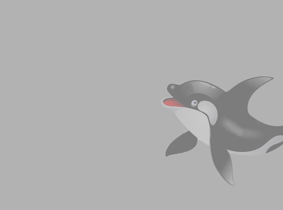 C8 Orca achtergrond.jpg