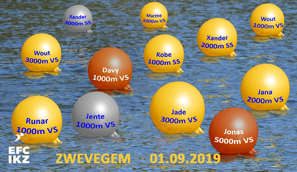 2019 09 01 Goed gedaan in Zwevegem.jpg