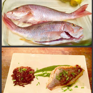 Costa Rican Red Snapper with Quinoa & Citrus Herb Sauce