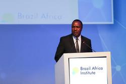 Brazil Africa Institute-51