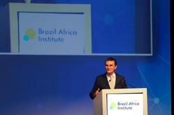 Brazil Africa Institute-22