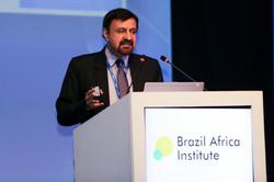 Brazil Africa Institute-62