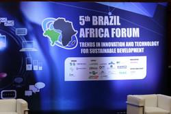 Brazil Africa Institute-4