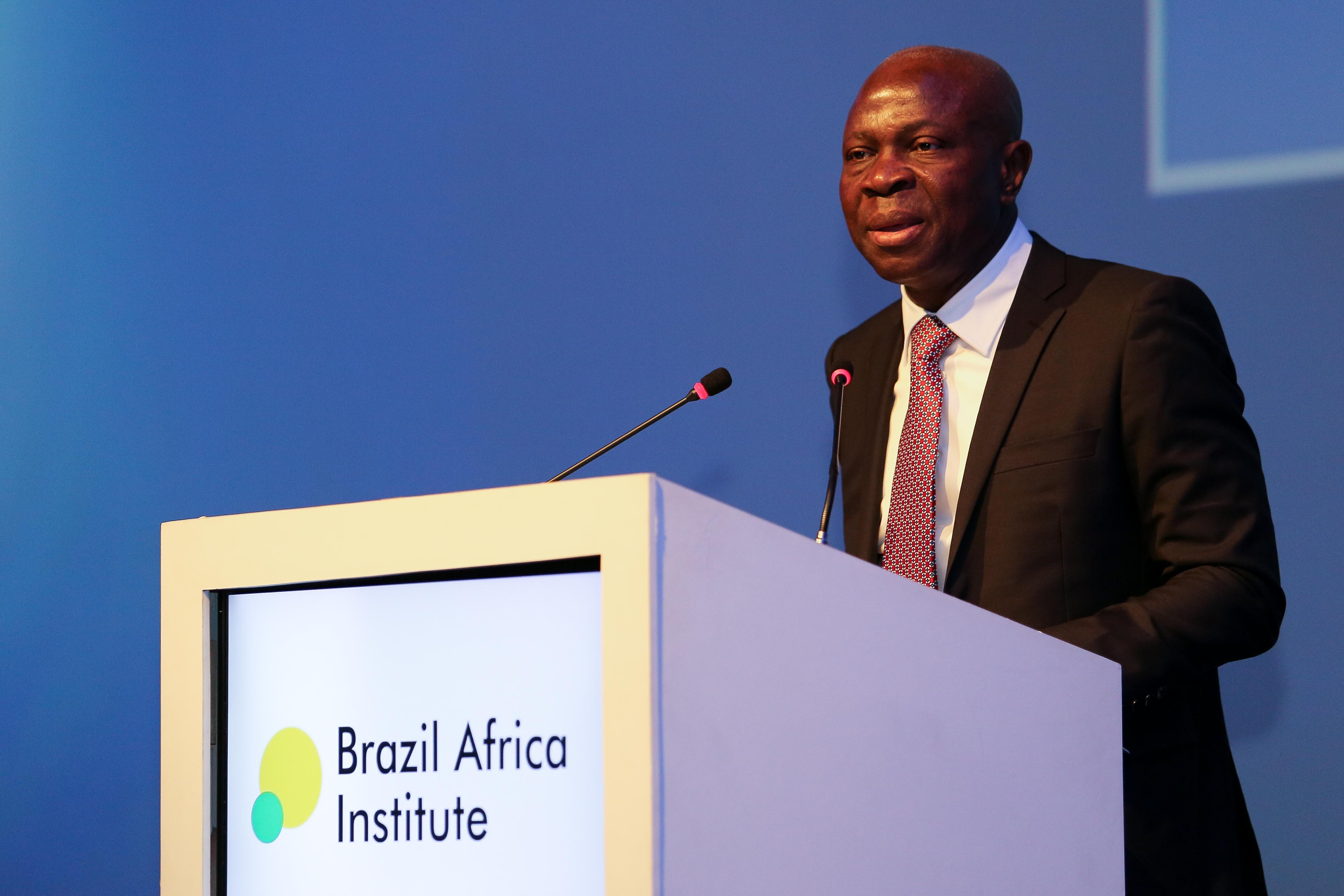 Brazil Africa Institute-28