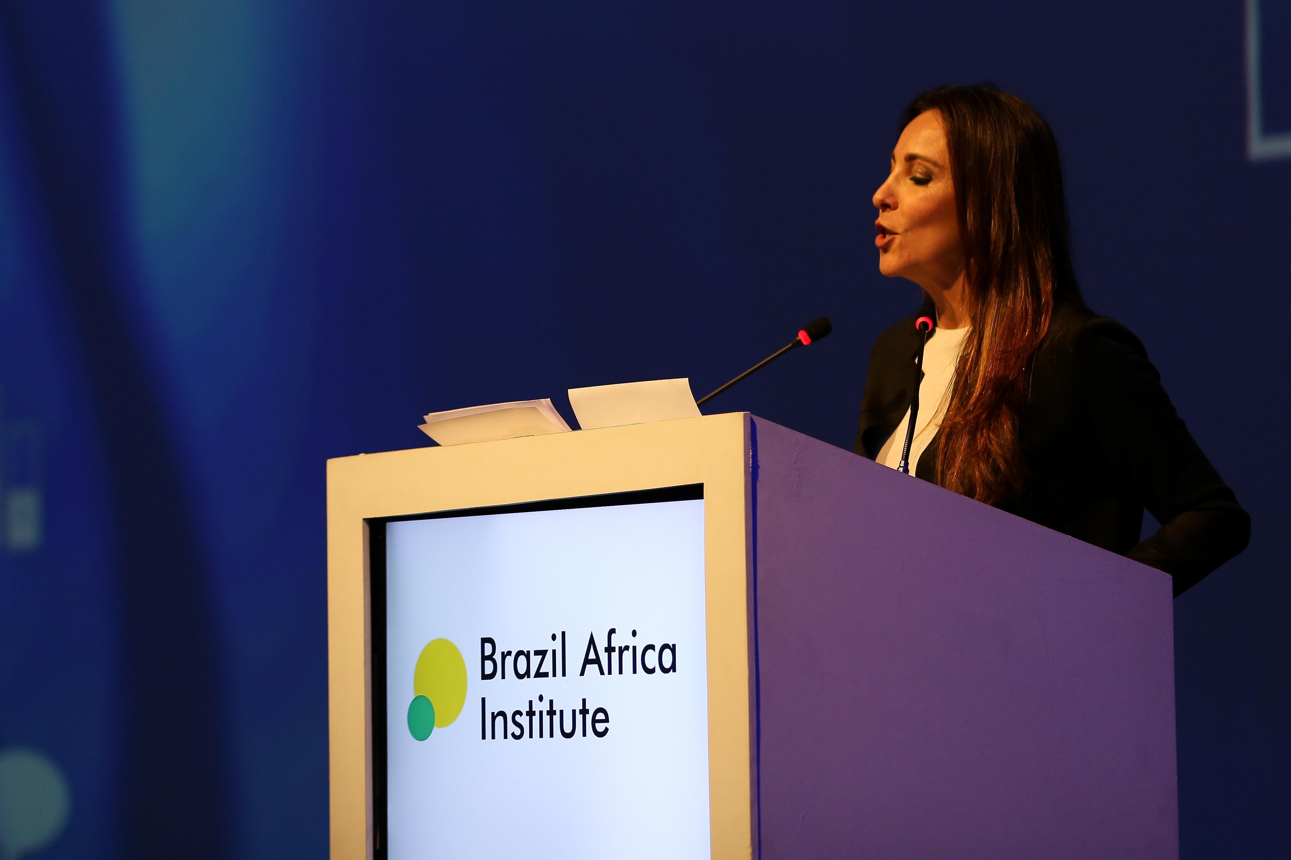 Brazil Africa Institute-7
