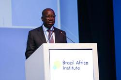 Brazil Africa Institute-56