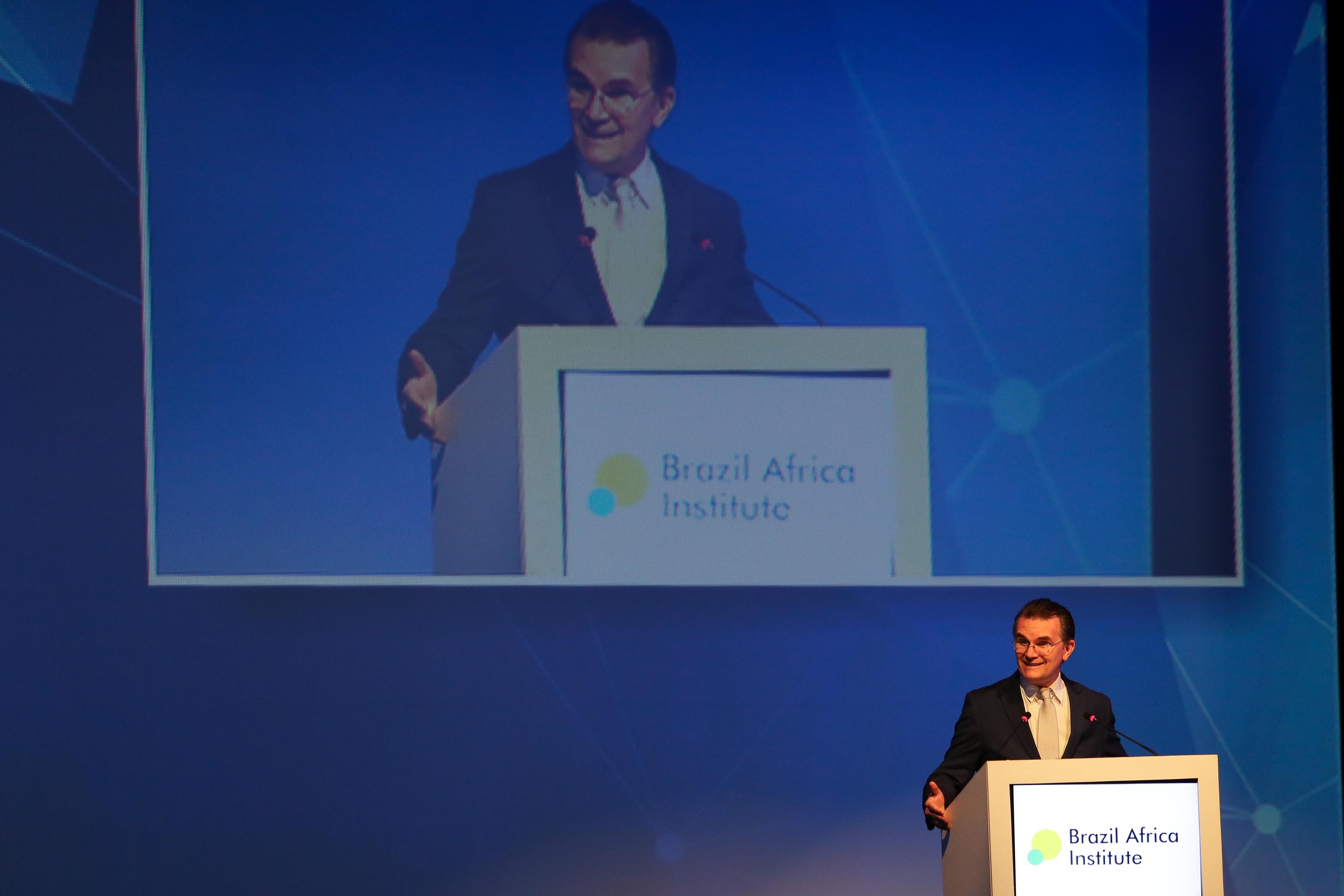 Brazil Africa Institute-20
