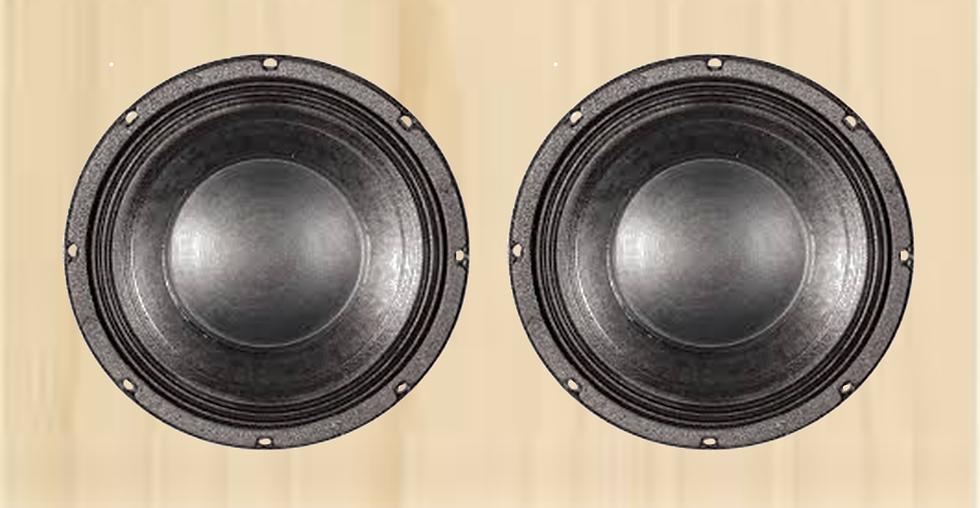 2x10 Bass Cabinet