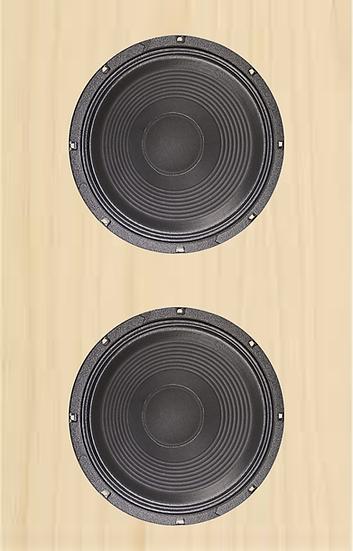 2x15 Bass Cabinet