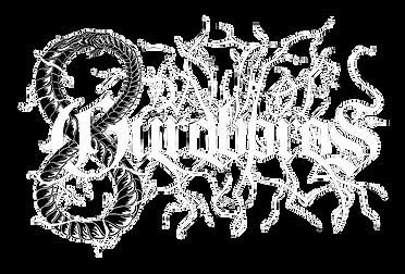 Band Logo No Background(1).png