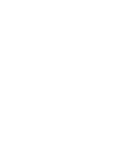 Face Drawing-8.png