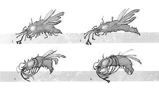 Dead Creature Thumbnails
