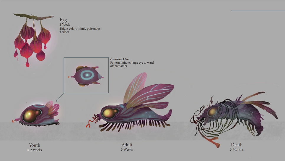 Creature Lifecycle