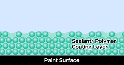 Paint Surface