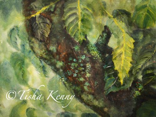 Fairy Moss Tree