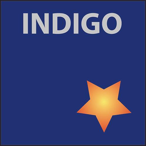 Donate to Live Worms Gallery: Indigo