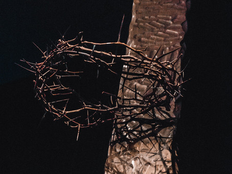 The Suffering of Jesus The Christ
