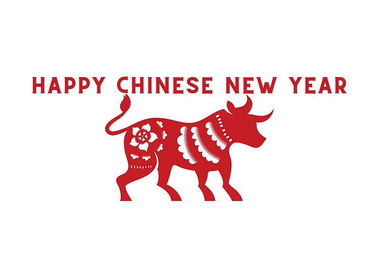CNY Camp Page Header (1).png