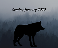 Coming January 2020.png