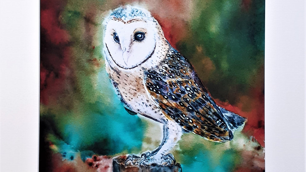 Barn owl limited edition print full view.