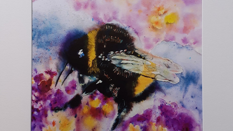 Hello Bee! Limited edition, mounted print, full image.
