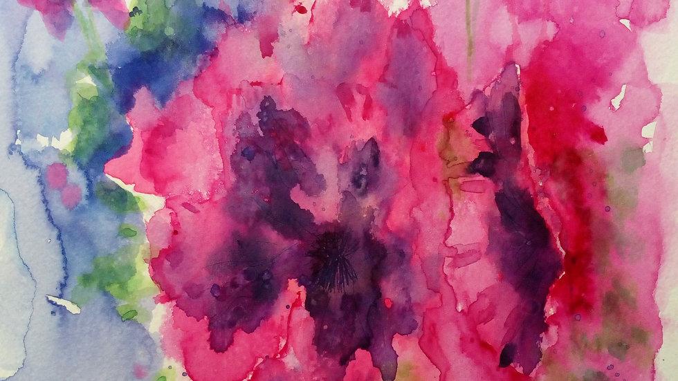 Pelargonium, watercolour flower painting,