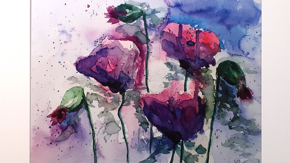 Poppies, full image of Poppies, limited edition, mounted print.