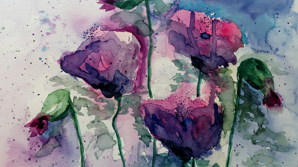 Poppies, watercolour flower painting, full image.