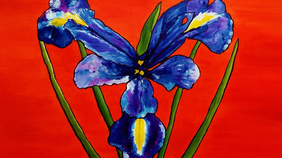 Iris, original acrylic painting, full image of flower and background.