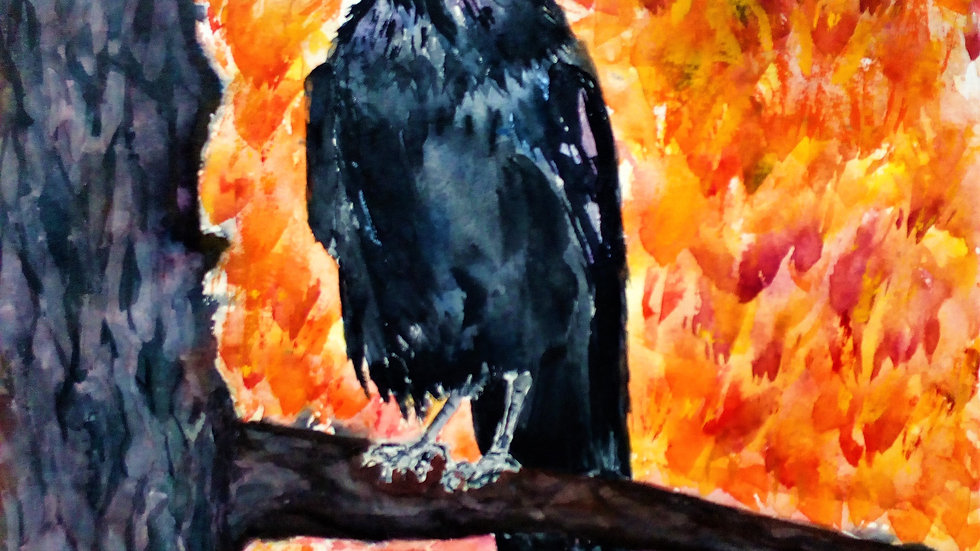 Autumn Crow An original, watercolour painting.