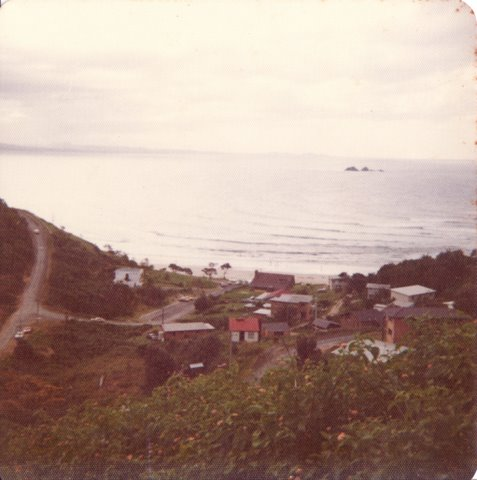Houses at Wategos - 1974