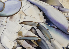 Crab Belly Giclee Print