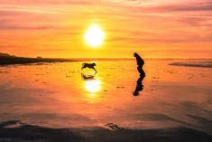 Jump the Sun
